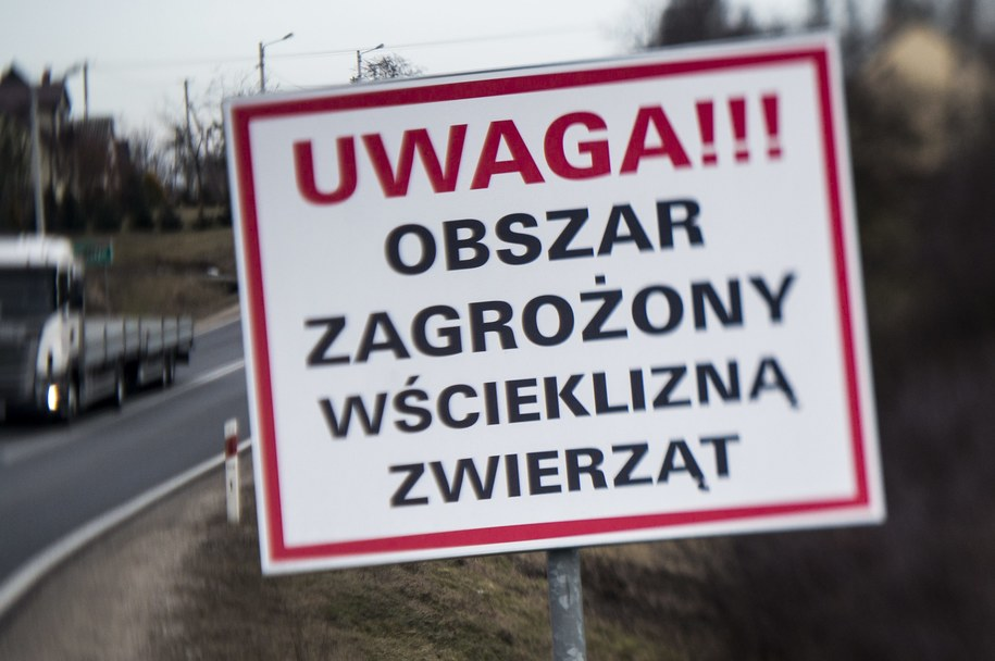 Zdjęcie ilustracyjne /Michał Walczak /PAP
