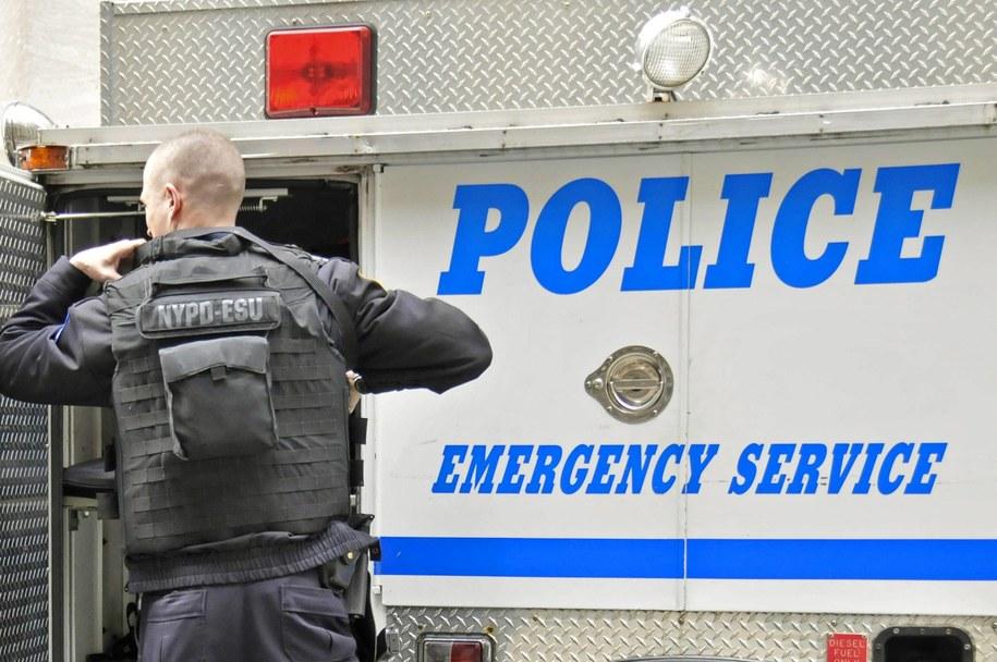 Zdjęcie ilustracyjne /W. G. Allgoewer   /PAP/EPA