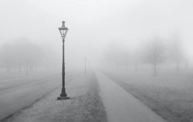 Gęste mgły w ośmiu województwach. IMGW ostrzega