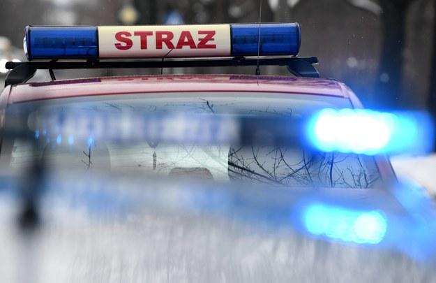 Pięcioro dzieci rannych w wypadku niedaleko Oleśnicy