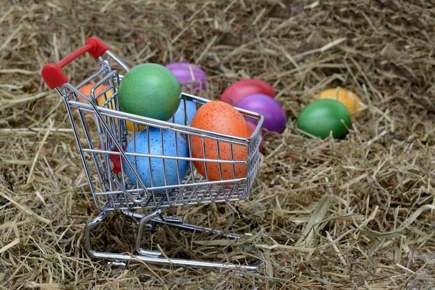 Rusza Wielkanocna Zbiórka Żywności
