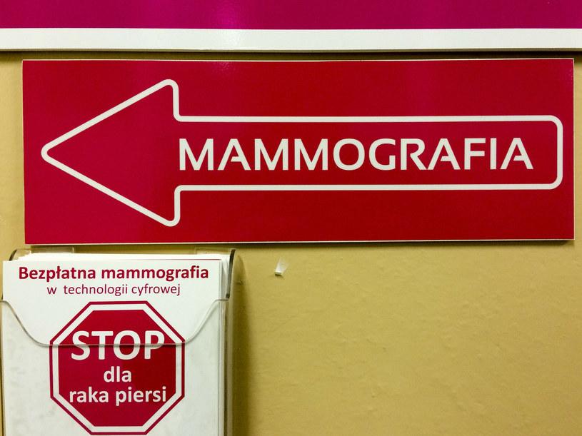 Zdjęcie ilustracyjne /Piotr Kamionka /Reporter