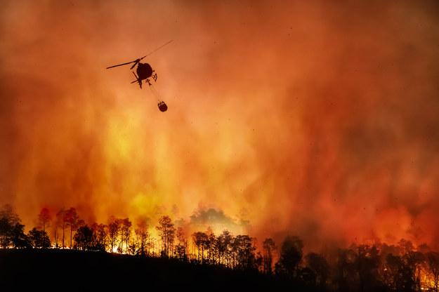Wielkie straty po pożarze na jednej z karaibskich wysp