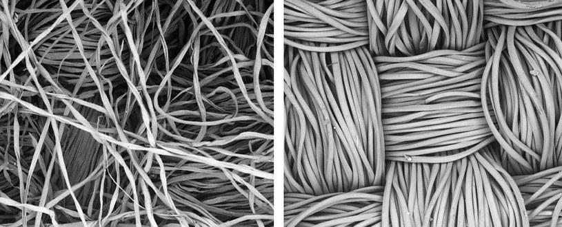 Zdjęcie mikroskopowe flaneli bawełnianej (po lewej) i poliestru (po prawej) /materiały prasowe