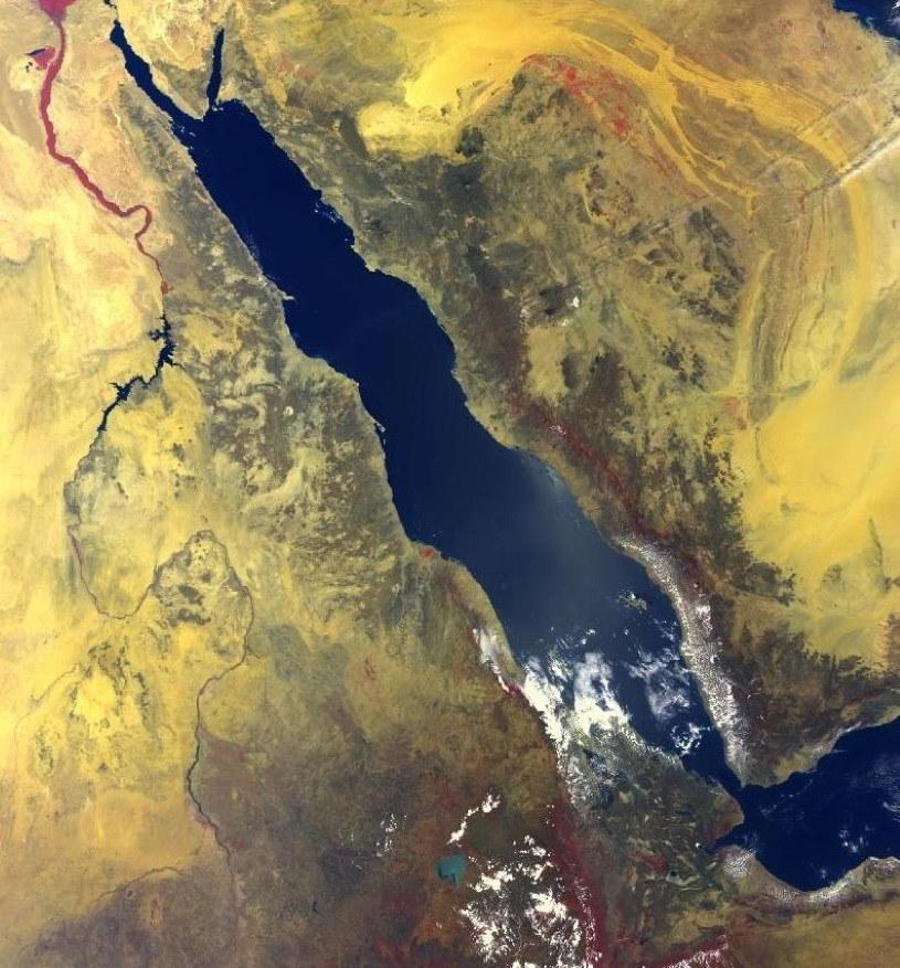 Zdjęcie NASA przedstawiające Morze Czerwone /NASA
