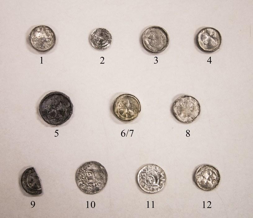 Zdjęcie przedstawia odkryty przez zespół badawczy przy kościele świętych Piotra i Pawła skarb monet. /interia /INTERIA.PL