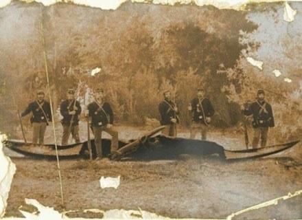 Zdjęcie przedstawiające żołnierzy amerykańskich z zastrzelonym przez nich pterozaurem, XIX wiek. /MWMedia