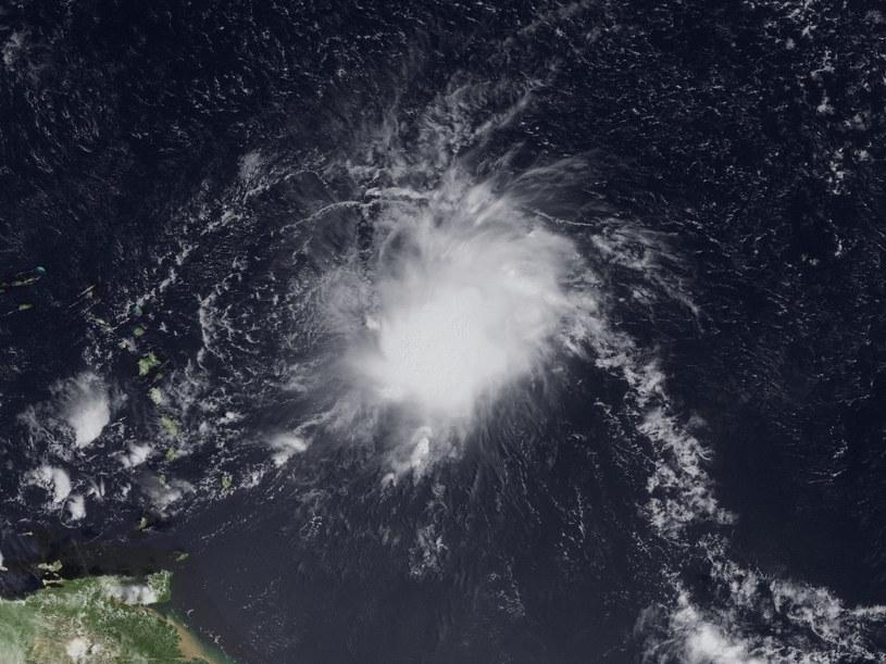 Zdjęcie satelitarne burzy tropikalnej Erika /AFP