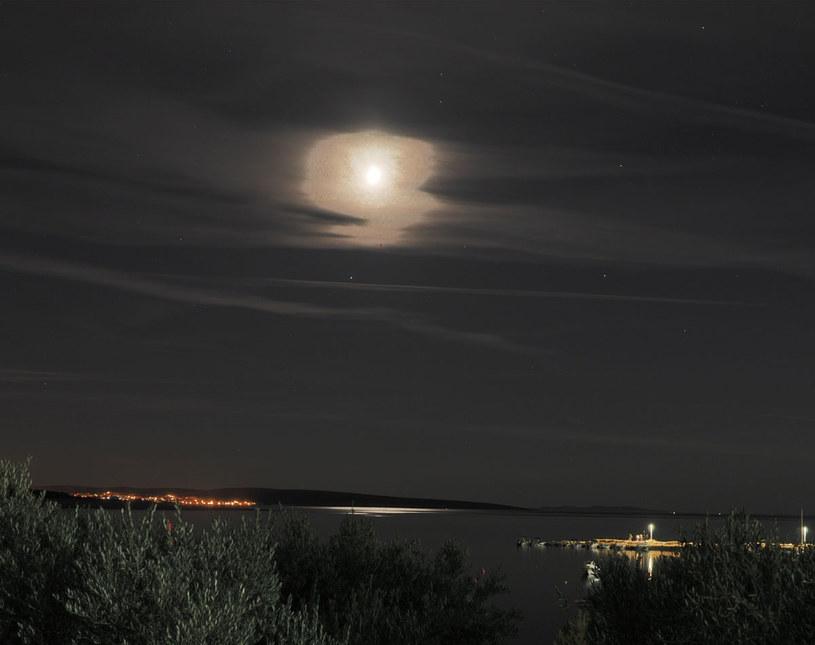 Zdjęcie wykonane aparatem Olympus E-M5 Mark III /Styl.pl