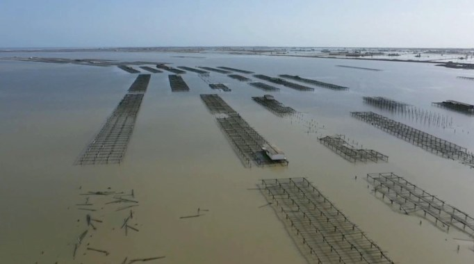 Zdjęcie wykonane dronem nad Deltą Ebro /SUSANNA SAEZ  /PAP/EPA