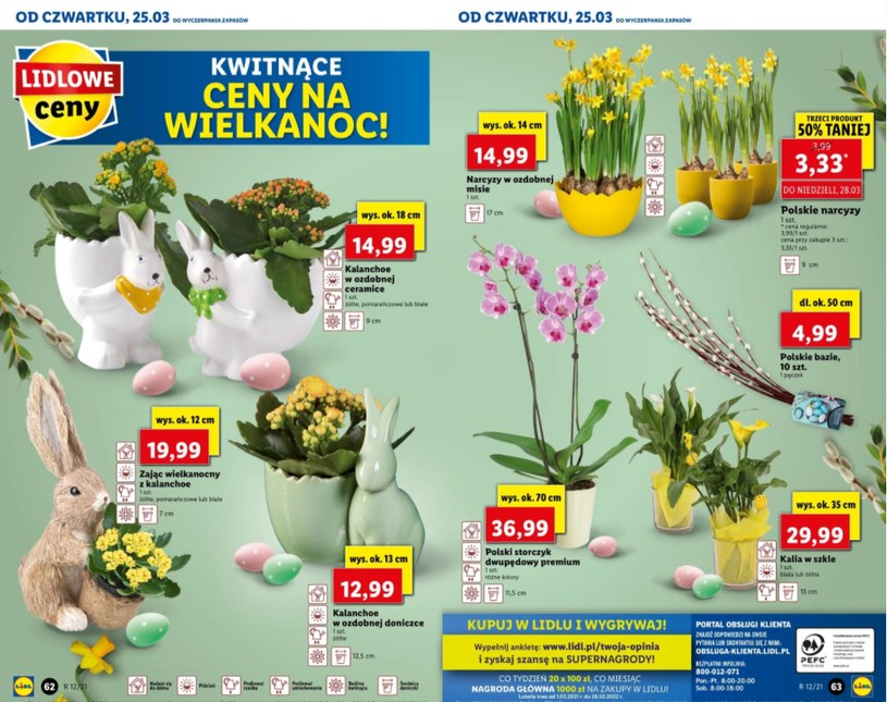 Zdjęcie z gazetki promocyjnej Lidla /ding.pl