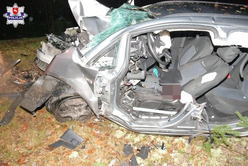 Zdjęcie z miejsca wypadku /http://lubelska.policja.gov.pl /