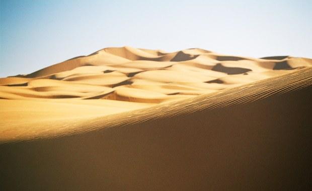 Zdobył Ligę Mistrzów, pokona pustynię? Jerzy Dudek startuje w Runmageddon Sahara