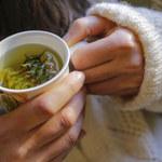 Zdradliwa zielona herbata