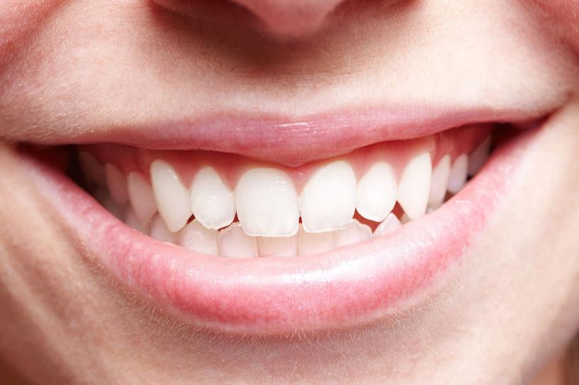 Zdrowe dziąsła to gwarancja mocnych zębów. A te odpowiadają za funkcjonowanie całego organizmu /123RF/PICSEL