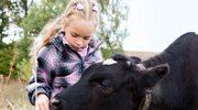 Zdrowo jest żyć ze zwierzętami, na przykład na farmie