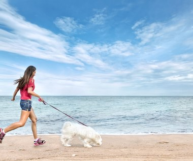 Zdrowotne zalety spacerowania