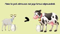 Zdrowsze niż mleko krowie? Sprawdzamy
