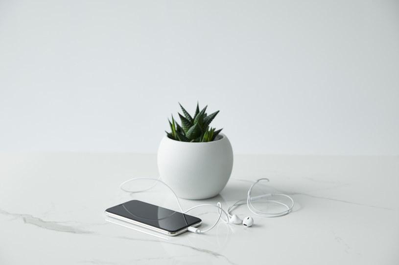 Żeby kupić odpowiednie słuchawki, trzeba zwrócić uwagę na kilka ważnych parametrów, od których zależą możliwości urządzenia /materiały promocyjne