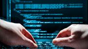 Zemsta tureckich hakerów na Holandii