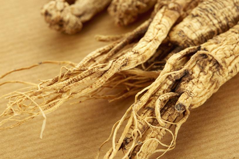 Żeń-szeń jest tradycyjnym chińskim lekiem ziołowym /123RF/PICSEL