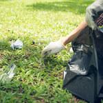 Zero waste w kilku krokach