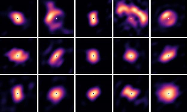 Zespół astronomów pod kierunkiem dr inż. Jakuba Kluski zaobserwował 15 dysków protoplanetarnych wokół gwiazd odległych od nas o setki lat świetlnych /Jacques Kluska et al. /Materiały prasowe