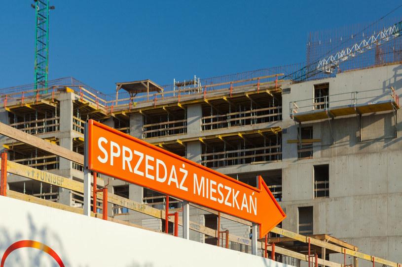 Zgodnie z propozycją rządu wysokość części kredytu objętej gwarancją państwa nie może być wyższa niż 100 tys. złotych. /Arkadiusz Ziółek /East News