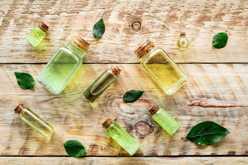 Zielona herbata to uniwersalny, naturalny dodatek do wielu kosmetyków /123RF/PICSEL