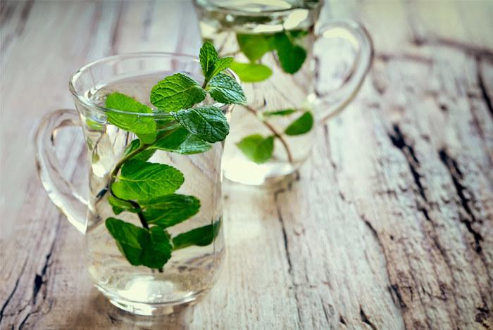 zielona herbata z miętą /© Photogenica