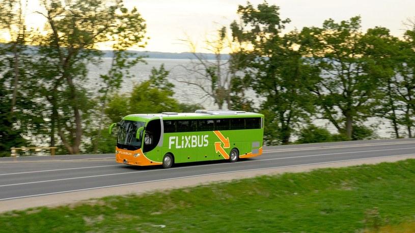 Zielone autobusy wkrótce pojawią się w USA /materiały prasowe