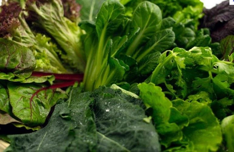 zielone warzywa liściaste /© Photogenica
