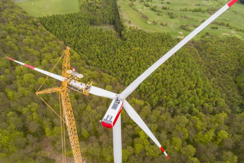 Zielony boom już się zaczął /123RF/PICSEL