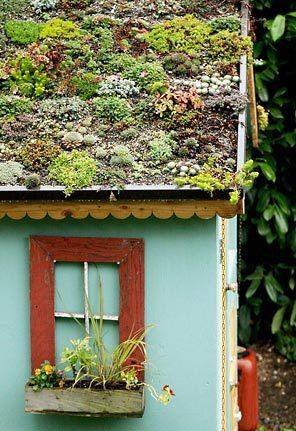 zielony dach /© Photogenica
