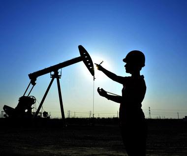 Zielony kurs światowych gospodarek uderzy w ropę