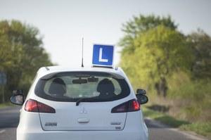 Zielony listek i okres próbny. Kiedy zmiany w prawach jazdy?