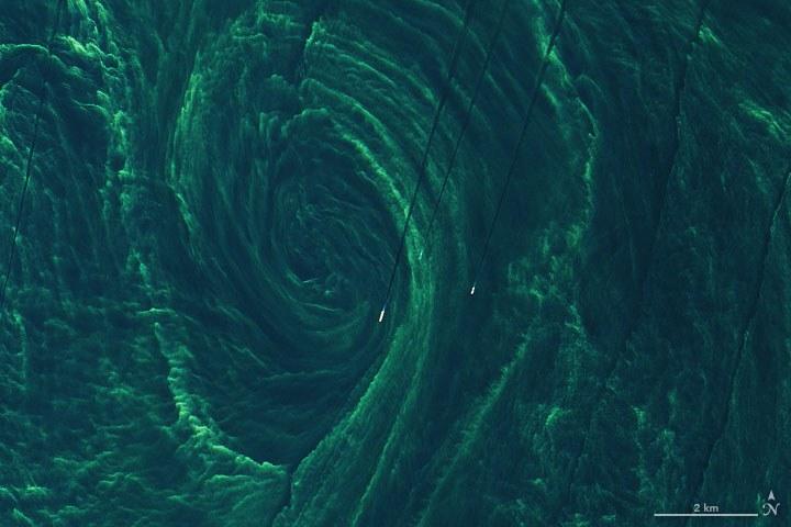 Zielony wir na Bałtyku został sfotografowany w 2020 roku /Twitter / Joshua Stevens /Twitter