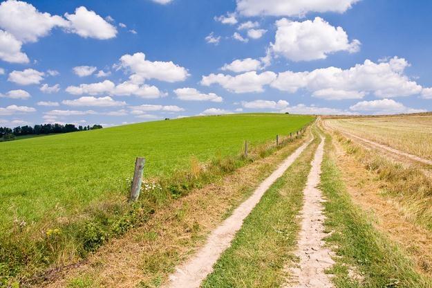 Ziemia rolna jeszcze nigdy nie była tak droga /© Panthermedia