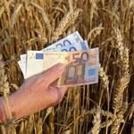 Ziemia rolna niskiej jakości drożeje najszybciej