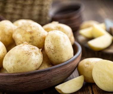 Ziemniak, czyli diabelskie warzywo. Wspiera zdrowie czy mu szkodzi? Jak go jeść i z czym łączyć?