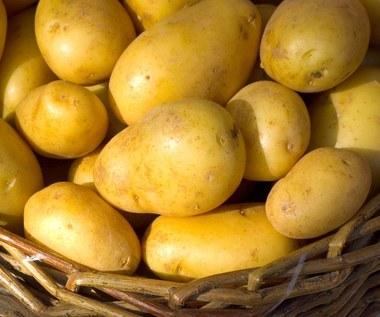 Ziemniaki do obiadu na siedem sposobów