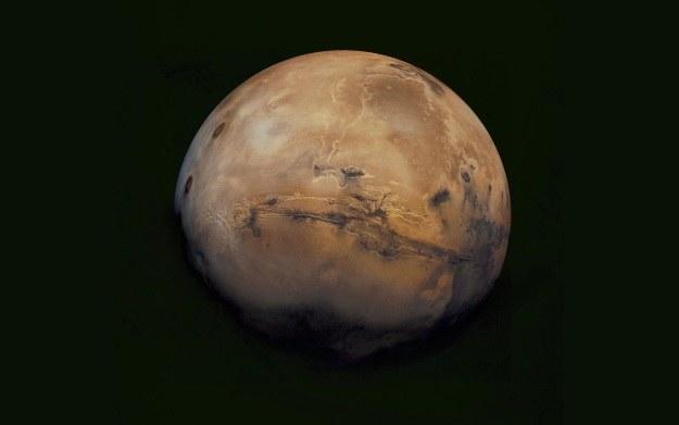 Ziemskie bakterie mogłyby zadomowić się na Marsie /NASA