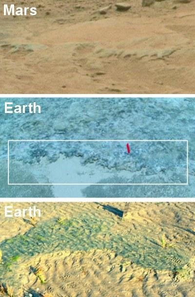 Ziemskie środowiska mikroorganizmów i ich porównanie do potencjalnych skamieniałości marsjańskich. /materiały prasowe