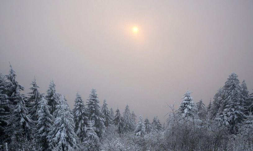 Zima daje się we znaki /PAP