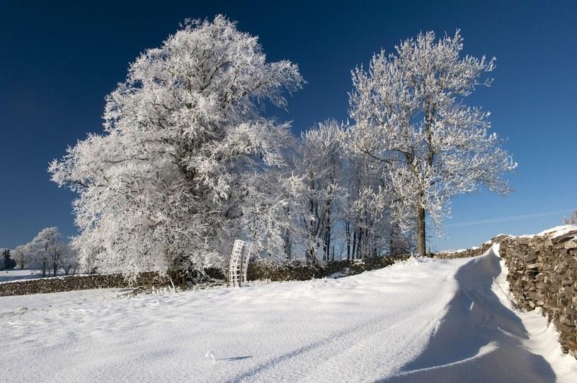 Zima na horyzoncie /East News