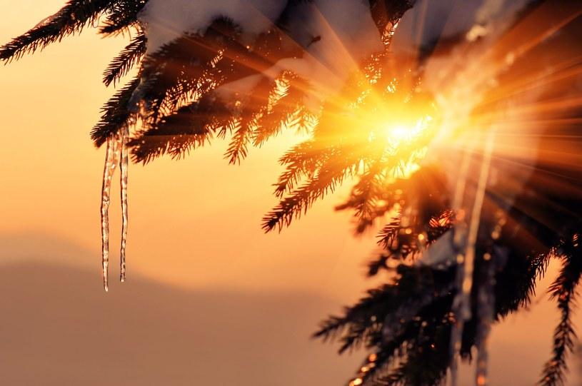 Zima póki co jest dla nas bardzo łaskawa /123RF/PICSEL