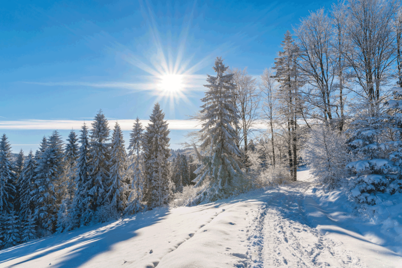 Zima w Beskidzie Sądeckim /123RF/PICSEL