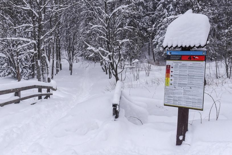 Zima w Kuźnicach w Zakopanem. W całych Tatrach obowiązuje czwarty stopień zagrożenia lawinowego /Jan Niedziałek /PAP
