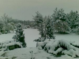 Zima w Opolu/ Zdjęcie z Gorącej Linii RMF FM //