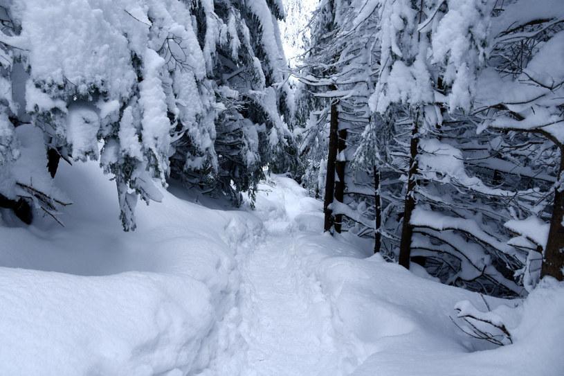 Zima w Tatrach /Albin Marciniak /East News